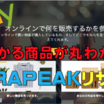 eBayのリサーチツール「テラピーク」とは?